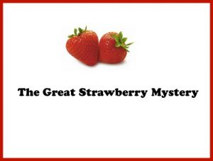 The Great Strawberry Mystery